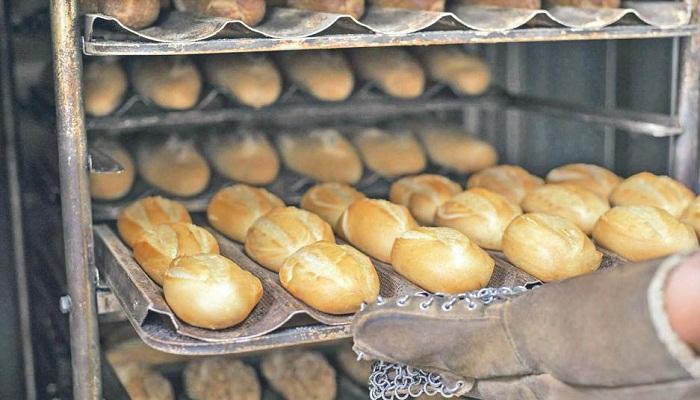 Carrera SENATI Panadería Industrial